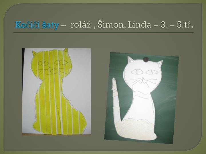 Kočičí šaty