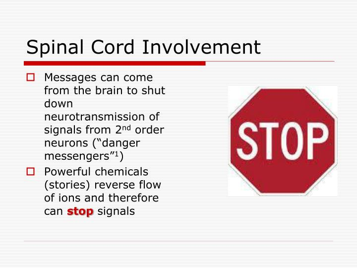 Spinal Cord Involvement
