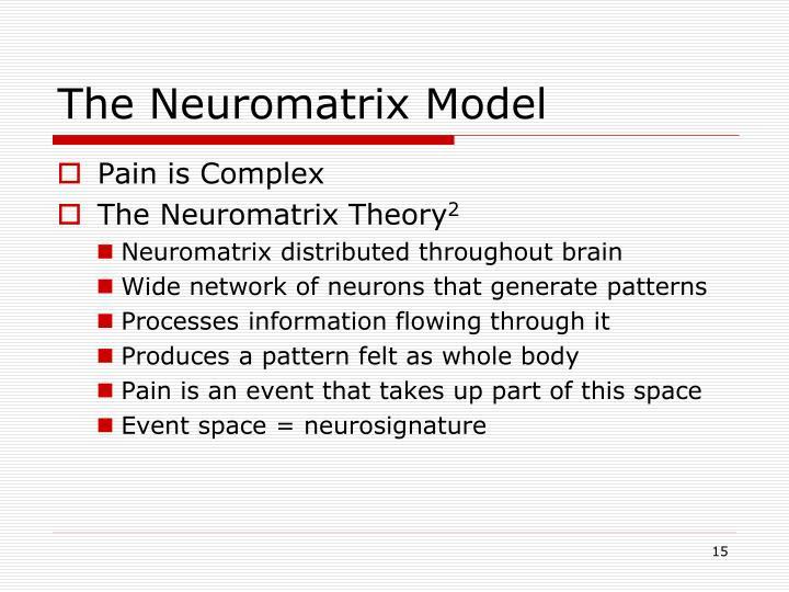 The Neuromatrix Model