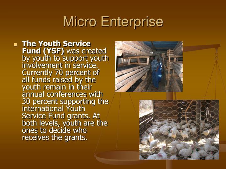Micro Enterprise