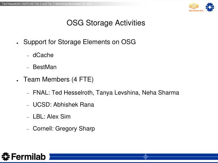 OSG Storage Activities