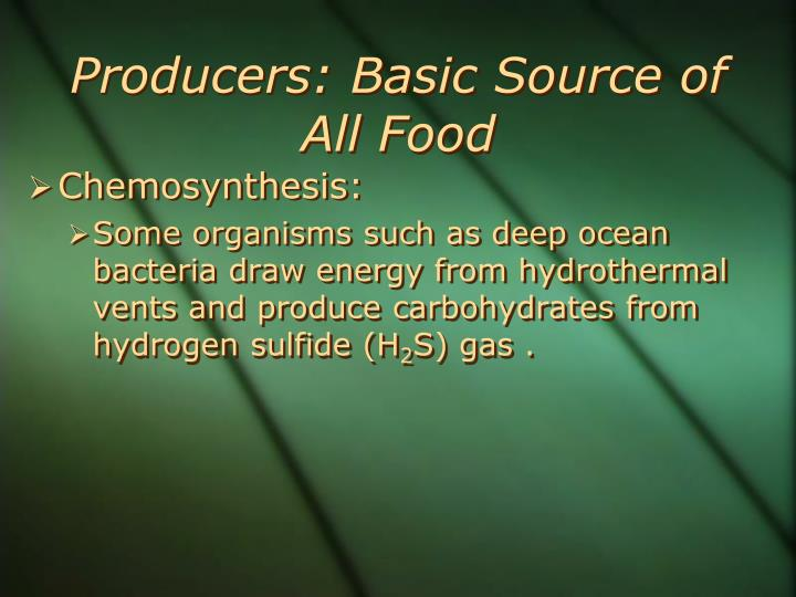 Producers: Basic Source of All Food