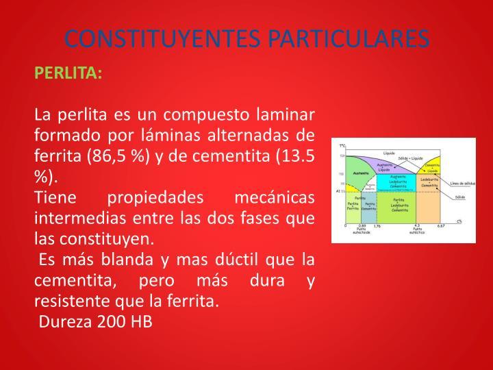 CONSTITUYENTES PARTICULARES