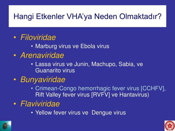 Hangi Etkenler VHA'ya Neden Olmaktadır?