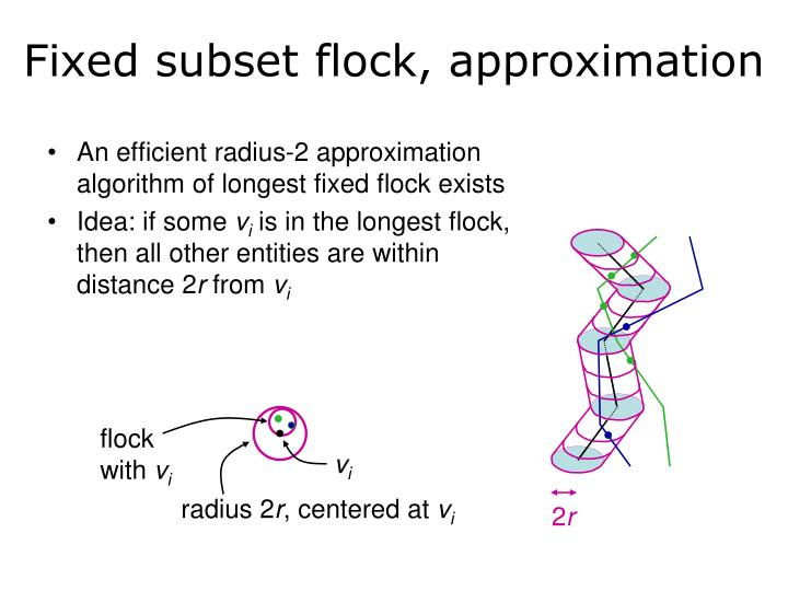 Fixed subset flock, approximation
