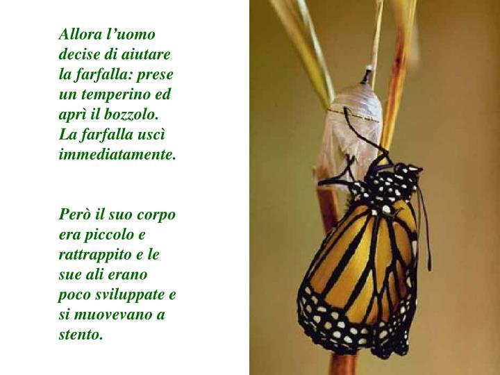Allora l'uomo decise di aiutare la farfalla: prese un temperino ed aprì il bozzolo.