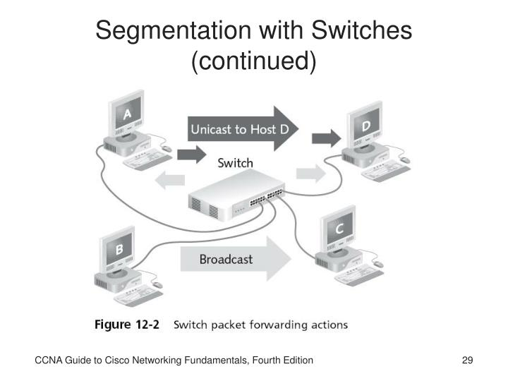 Segmentation with Switches (continued)