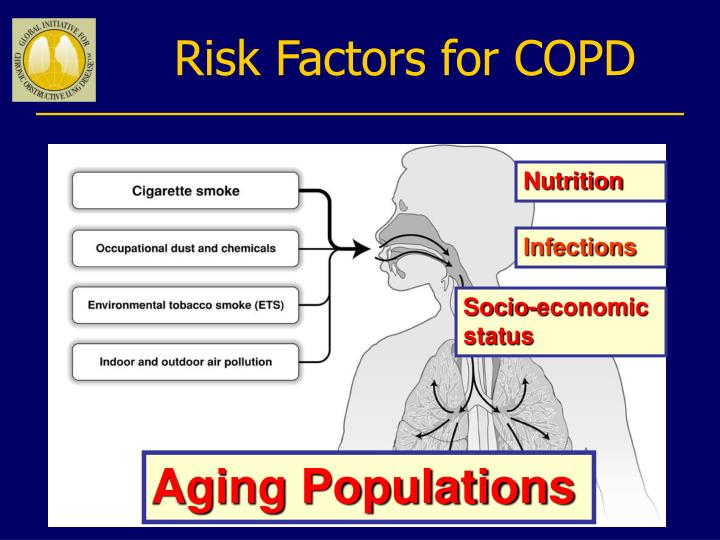 Risk Factors for COPD