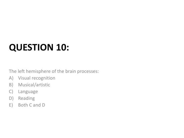 The left hemisphere of the brain processes: