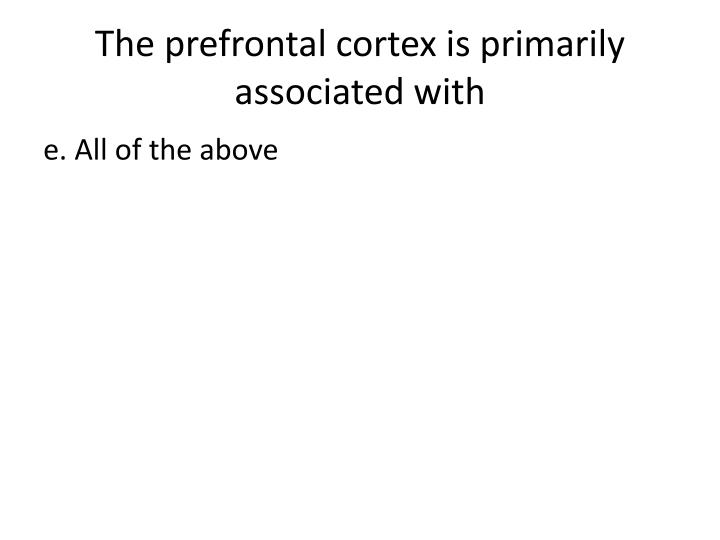 The prefrontal cortex is primarily associated with