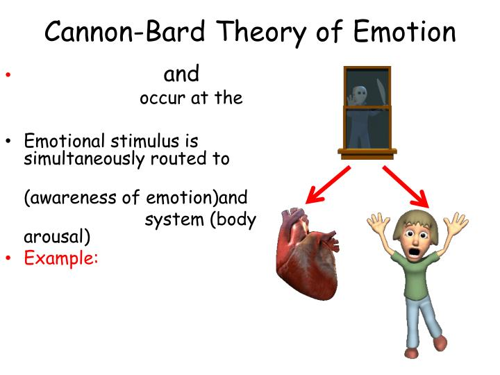 Schachter singer theory of emotion