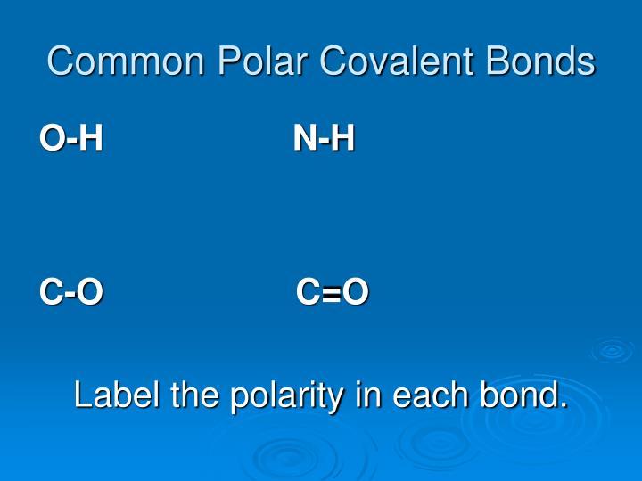Common Polar Covalent Bonds