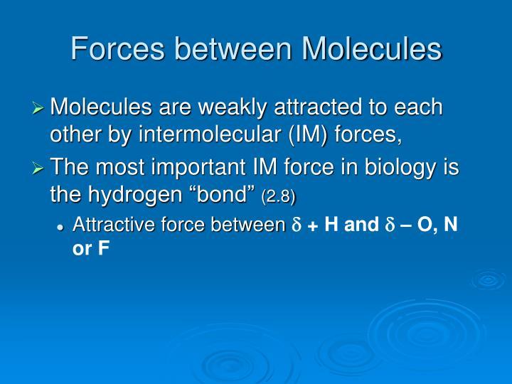 Forces between Molecules