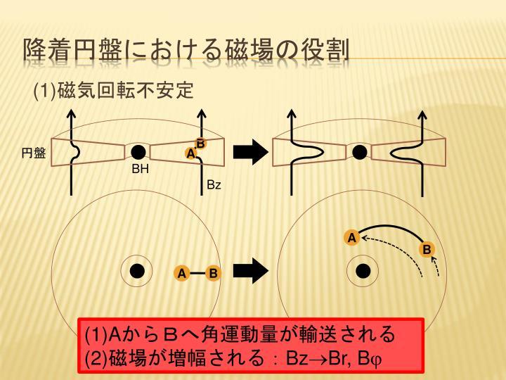 降着円盤における磁場の役割