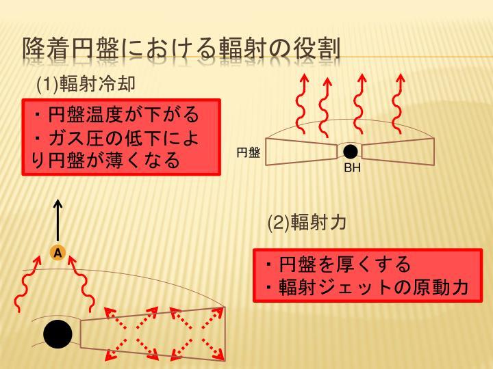 降着円盤における輻射の役割