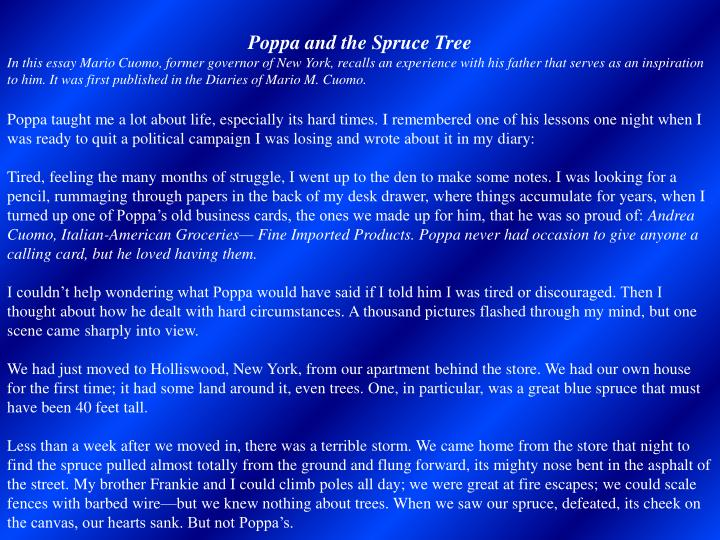 Poppa and the Spruce Tree