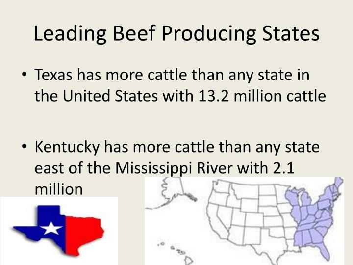 Leading Beef Producing States
