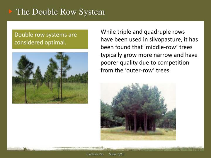 The Double Row System