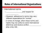 roles of international organizations1