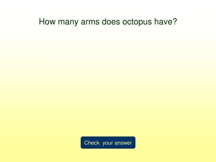 How many arms does octopus have?