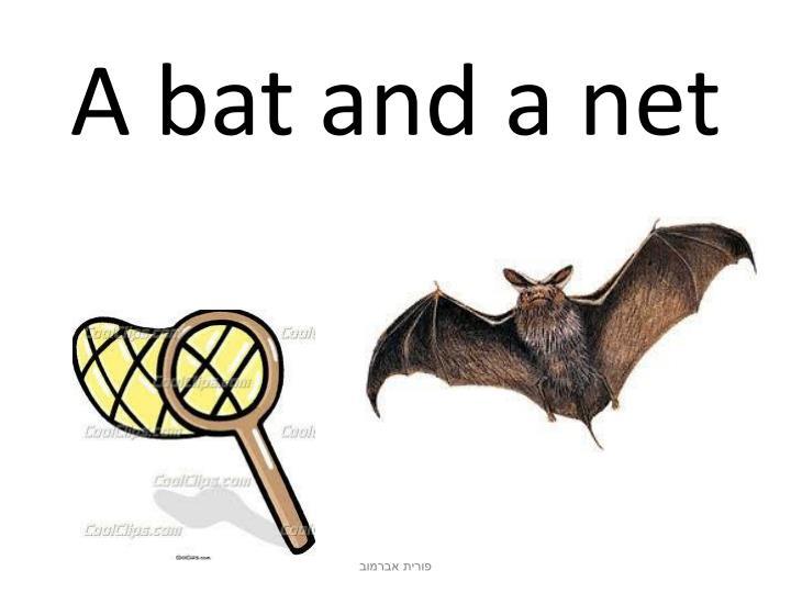 A bat and a net