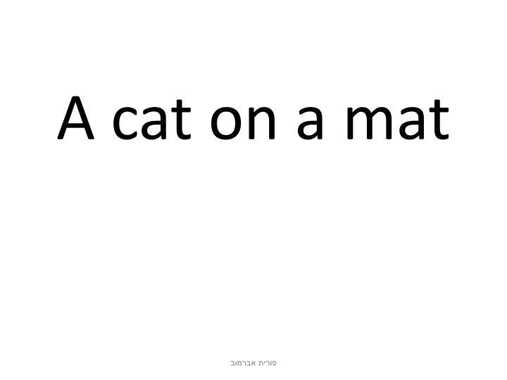 A cat on a mat