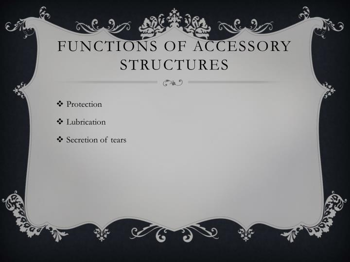 Functions of accessory structures