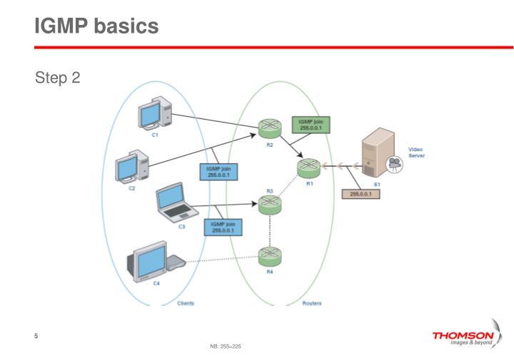 IGMP basics