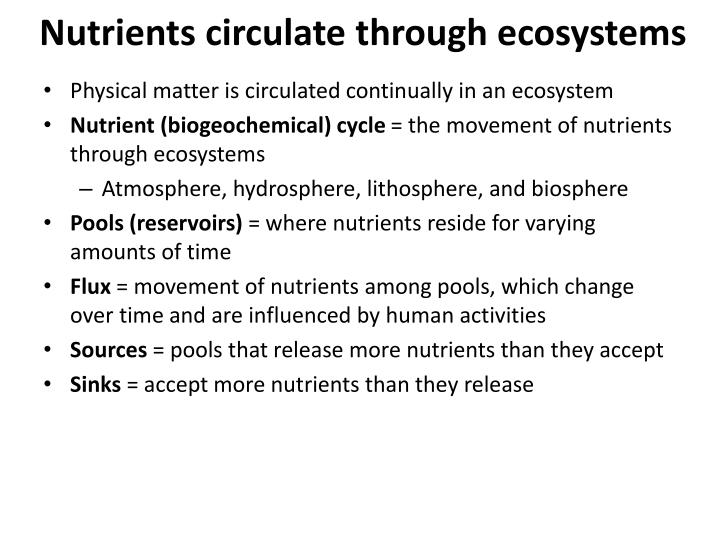 Nutrients circulate through ecosystems