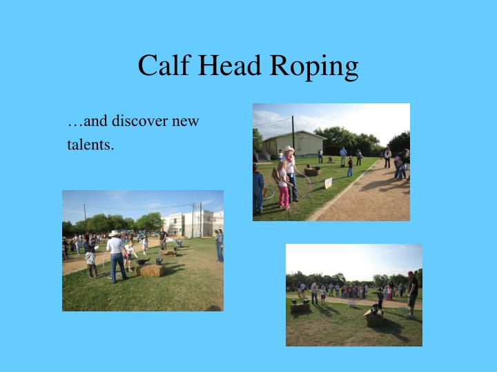 Calf Head Roping