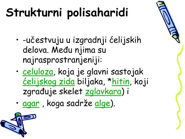 Strukturni polisaharidi
