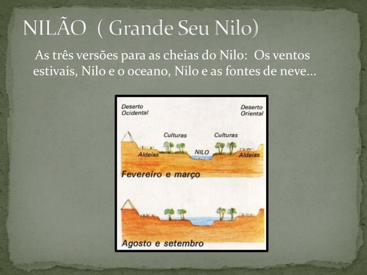 NILÃO  ( Grande Seu Nilo)