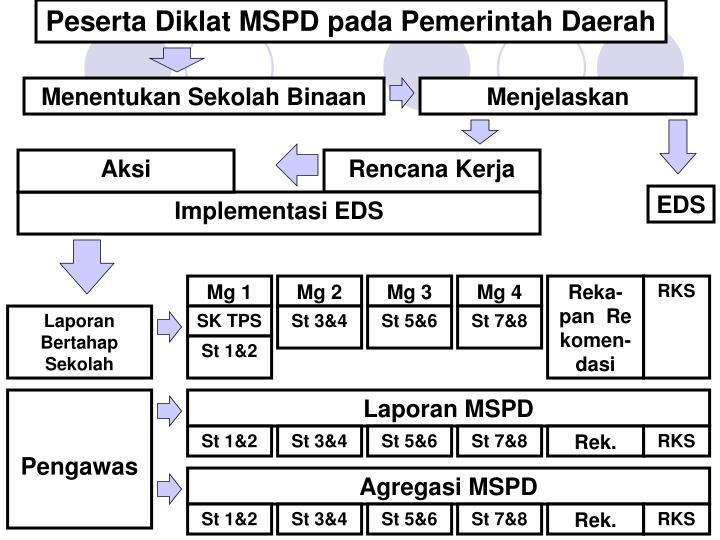 Peserta Diklat MSPD pada Pemerintah Daerah