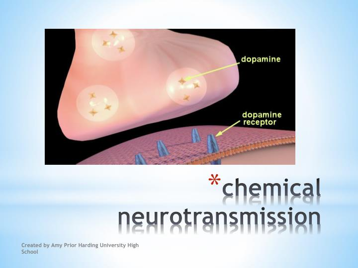 chemical neurotransmission