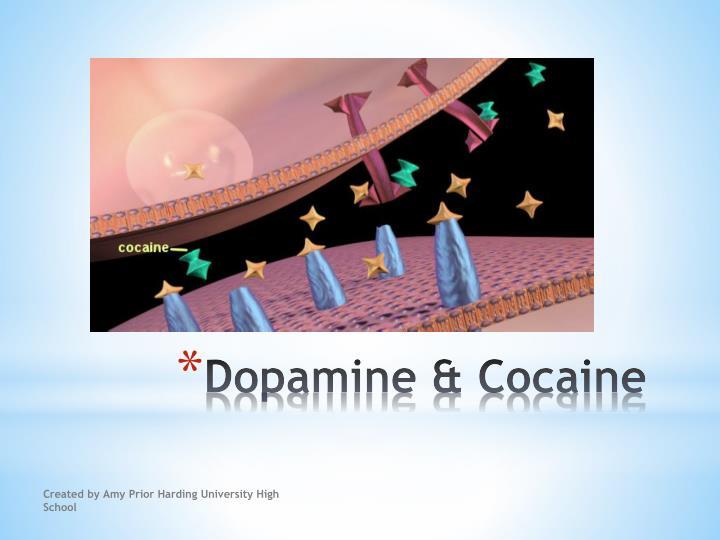 Dopamine & Cocaine