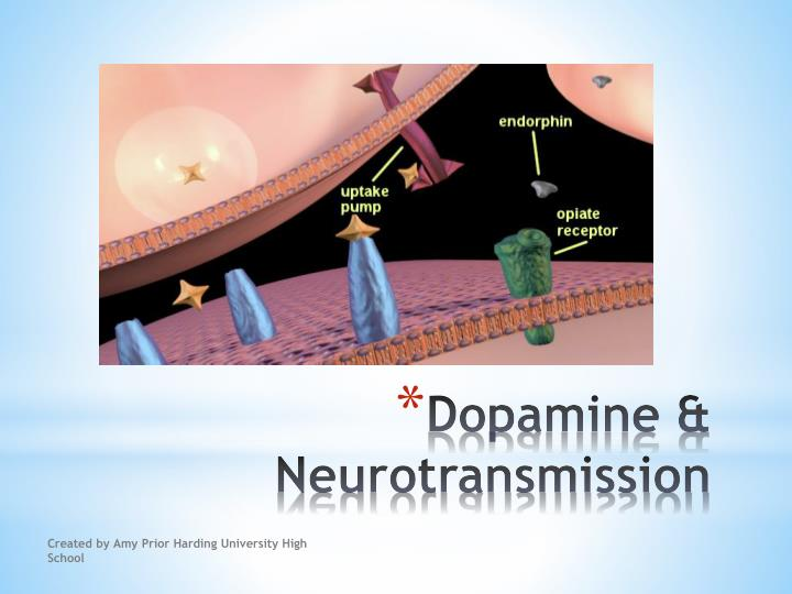 Dopamine & Neurotransmission
