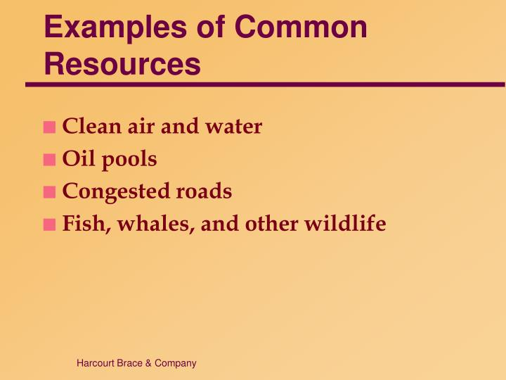 Examples of Common Resources