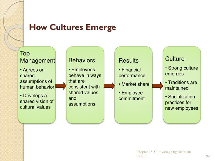How Cultures Emerge