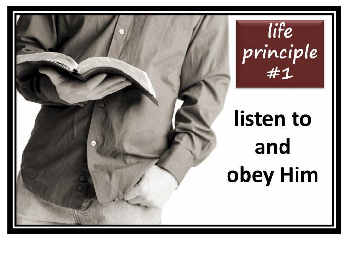 life principle