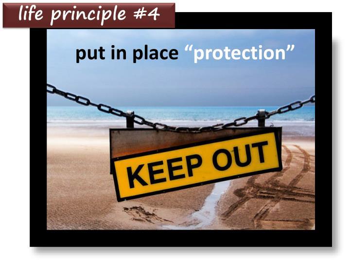 life principle #4