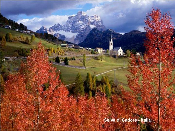 Selva di Cadore - Italia
