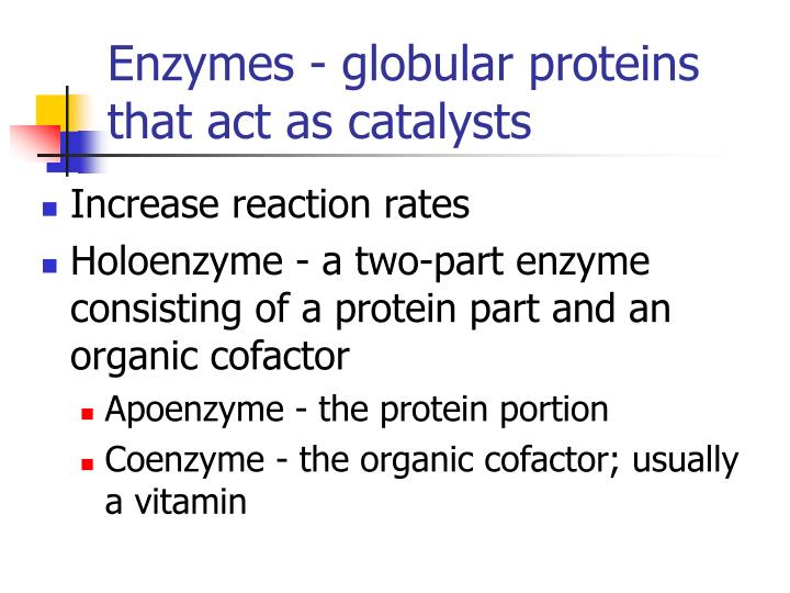 Enzymes - globular proteins that act as catalysts