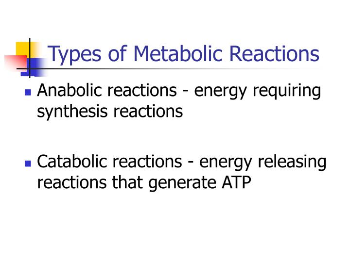 Types of Metabolic Reactions
