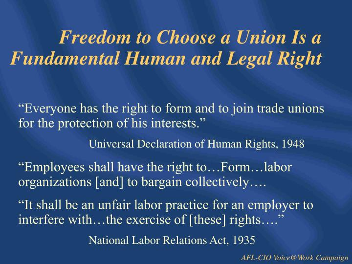 Freedom to Choose a Union Is a Fundamental Human and Legal Right