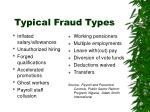 typical fraud types