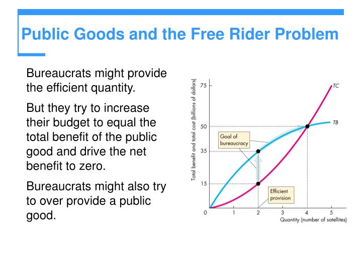 Public Goods and the Free Rider Problem