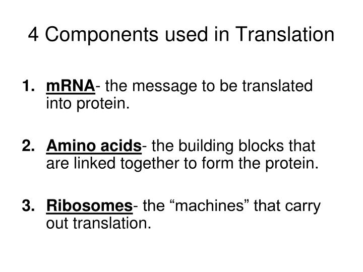 4 components used in translation