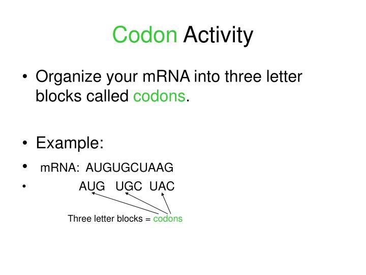Codon