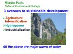 middle path national environment strategy