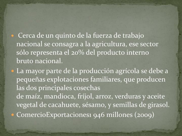 Cerca de un quinto de la fuerza de trabajo nacional se consagra a la agricultura, ese sector sólo representa el 20% delproducto interno brutonacional.